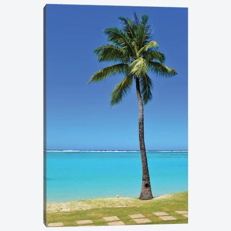 Tropical Beach Scene With Palm Tree And Steps Canvas Print #MFZ77} by Michael Fitzsimmons Canvas Wall Art
