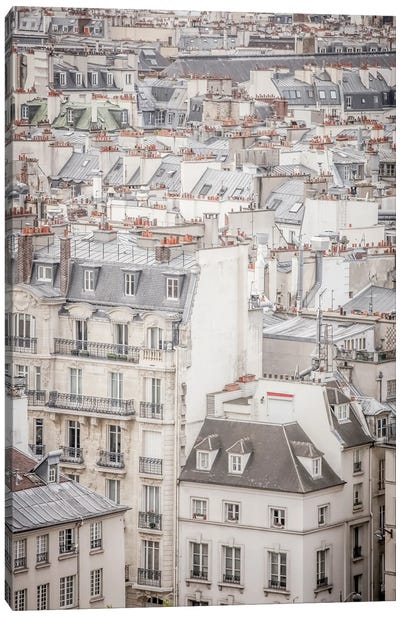 Rooftops In Paris Canvas Art Print