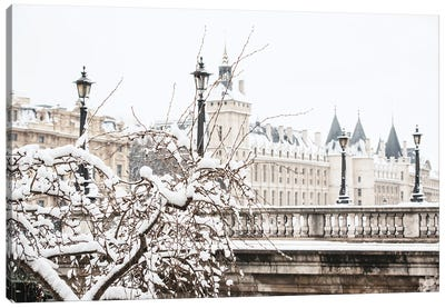 Snow In Paris Canvas Art Print