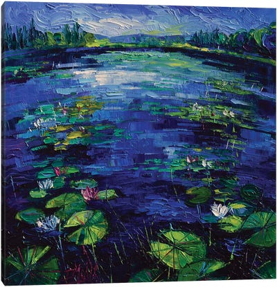 Water Lilies Magic Canvas Art Print