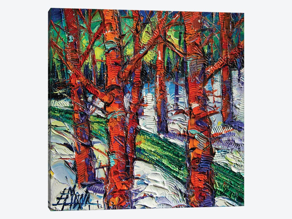 Bewitched Forest by Mona Edulesco 1-piece Canvas Wall Art