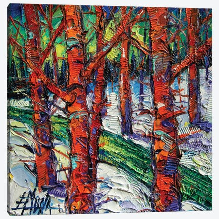 Bewitched Forest Canvas Print #MGE108} by Mona Edulesco Canvas Art