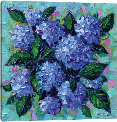 Blue Hydrangeas Canvas Art Print