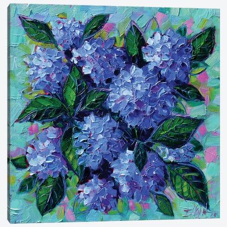 Blue Hydrangeas 3-Piece Canvas #MGE11} by Mona Edulesco Canvas Art Print