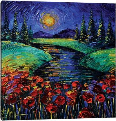 Magic Night Canvas Art Print