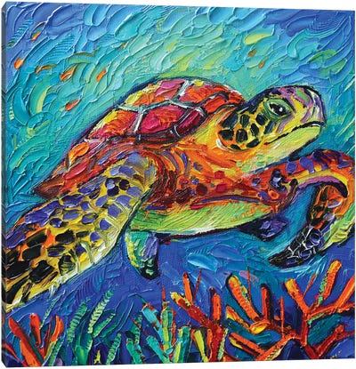 Colorful Turtle Canvas Art Print
