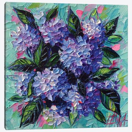 Hydrangeas Love Canvas Print #MGE133} by Mona Edulesco Art Print