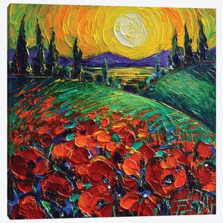 Poppyscape Sunset Canvas Print #MGE135} by Mona Edulesco Canvas Wall Art