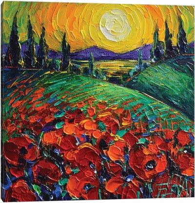 Poppyscape Sunset Canvas Art Print