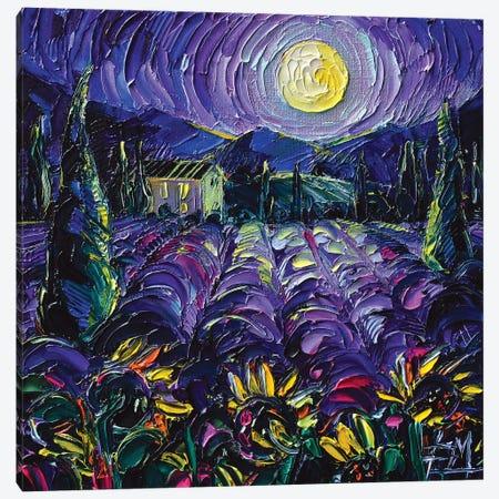 Provence Lavender Night Canvas Print #MGE136} by Mona Edulesco Canvas Artwork