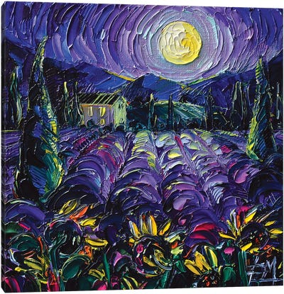 Provence Lavender Night Canvas Art Print