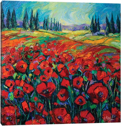 Poppies And Cypresses Canvas Art Print