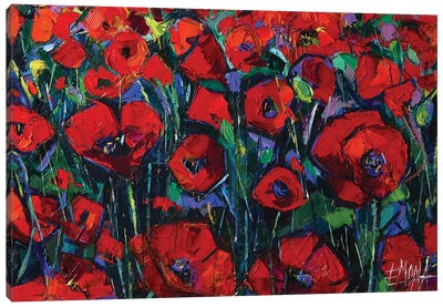 Poppies Symphony Canvas Art Print