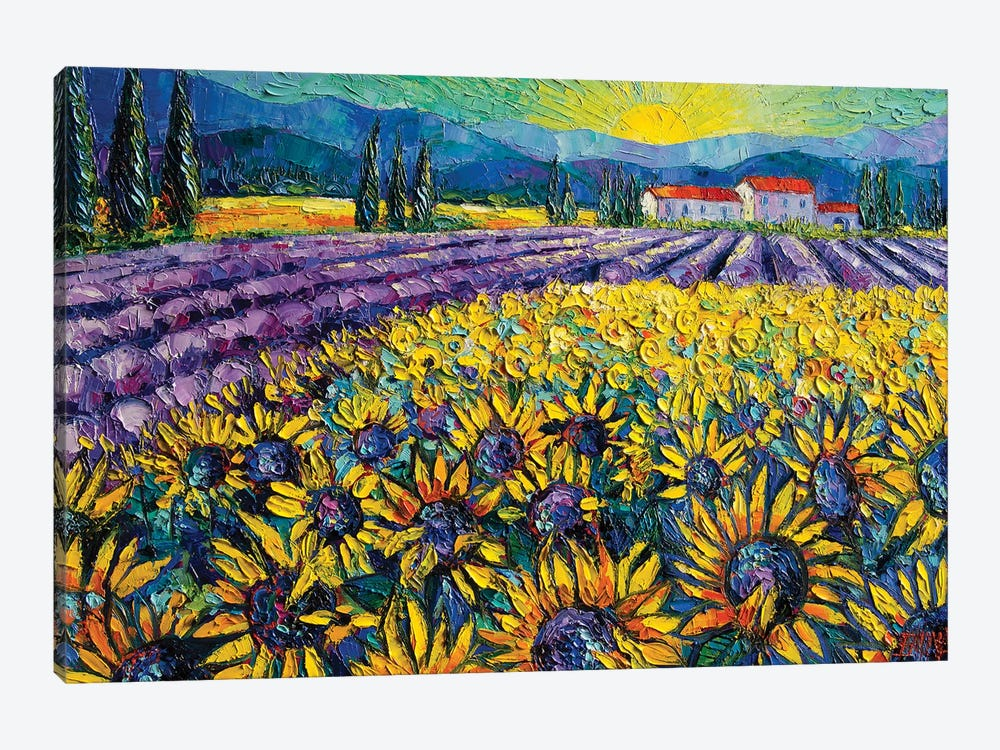 Sunflowers And Lavender Field - The Colors Of Provence by Mona Edulesco 1-piece Canvas Wall Art
