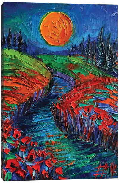 Supermoon And Poppies Canvas Art Print