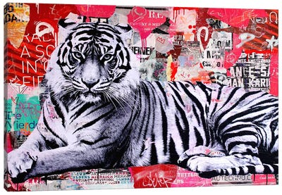 Tigerstyle I Canvas Print #MGF17
