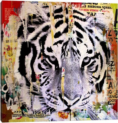 Tigerstyle II Canvas Art Print