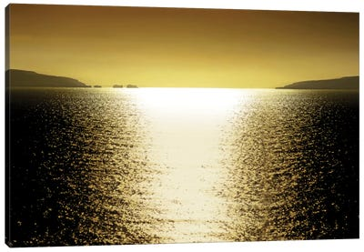 Sunlight Reflection - Golden Canvas Art Print