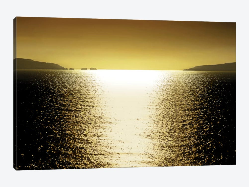 Sunlight Reflection - Golden 1-piece Canvas Art