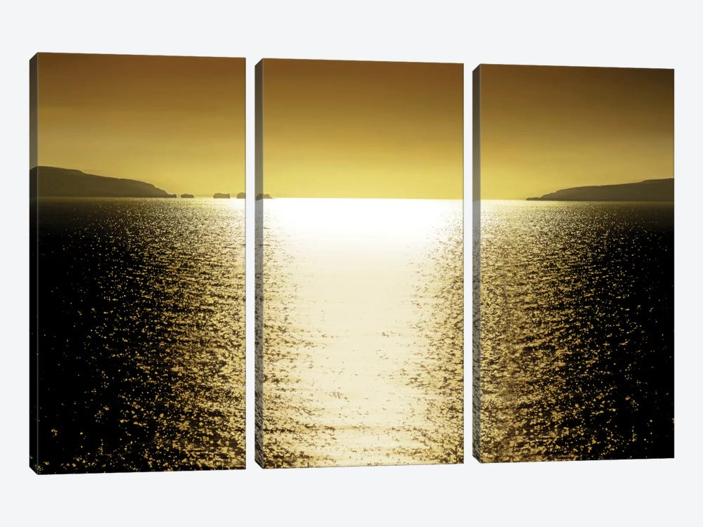 Sunlight Reflection - Golden by Maggie Olsen 3-piece Canvas Art