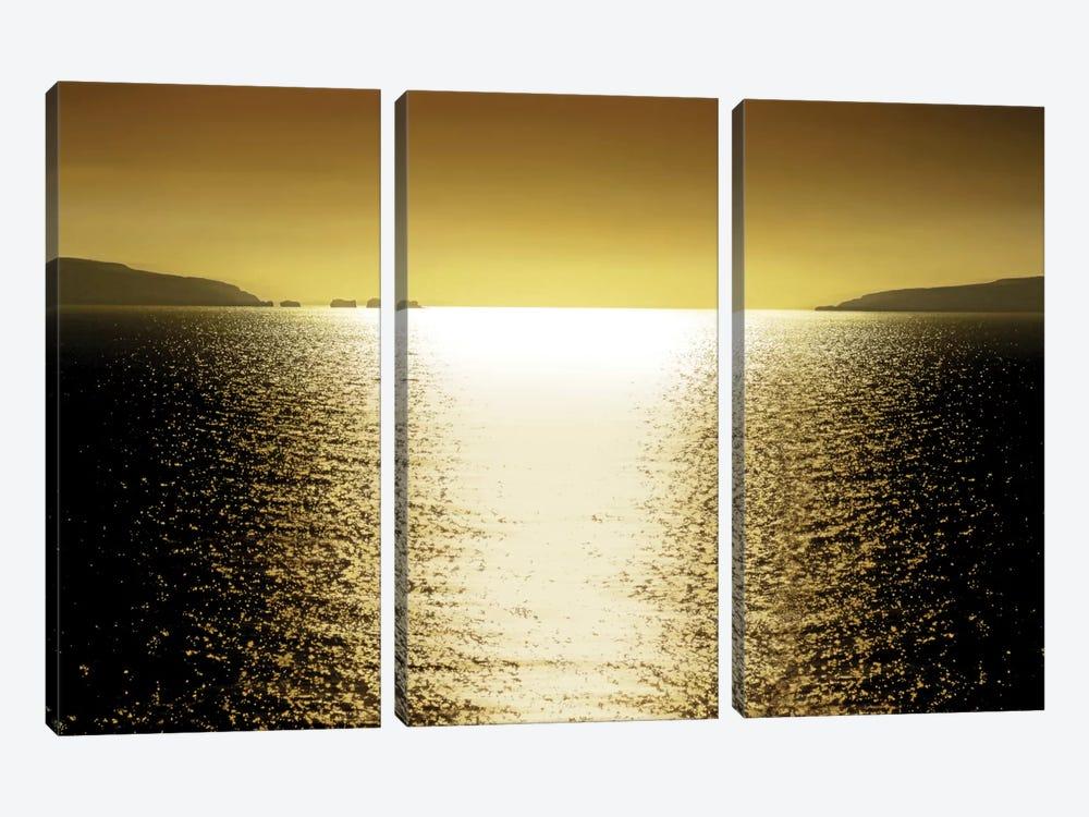Sunlight Reflection - Golden by Maggie Olsen 3-piece Canvas Art