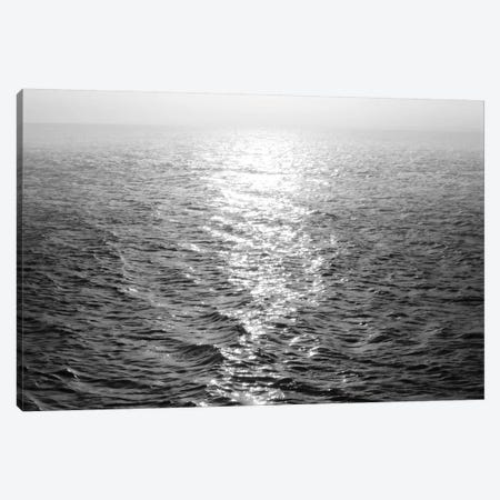 Open Sea III Canvas Print #MGG37} by Maggie Olsen Canvas Artwork