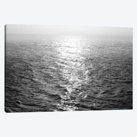 Open Sea III Canvas Print #MGG37} by Maggie Olsen Canvas Artwork