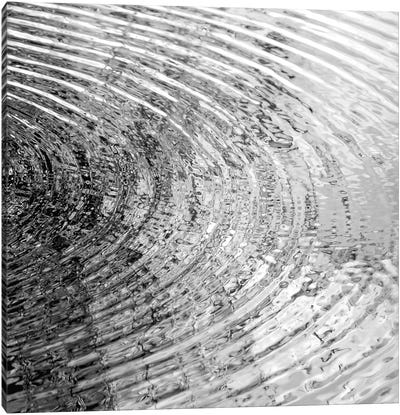 Ripples Black & White II Canvas Art Print