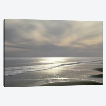 Silver Light Canvas Print #MGG8} by Maggie Olsen Canvas Wall Art