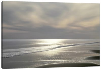Silver Light Canvas Art Print