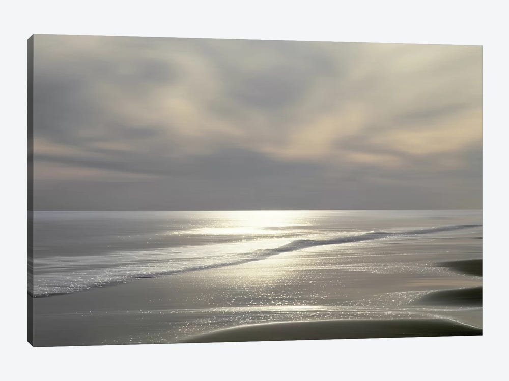 Silver Light by Maggie Olsen 1-piece Canvas Wall Art
