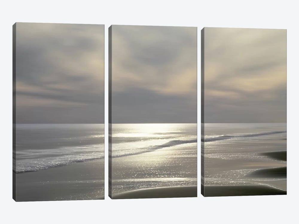 Silver Light by Maggie Olsen 3-piece Canvas Art