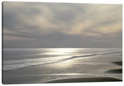 Silver Light Canvas Art Print