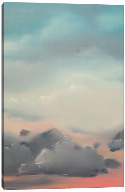 There Is Vast Abundance Canvas Art Print