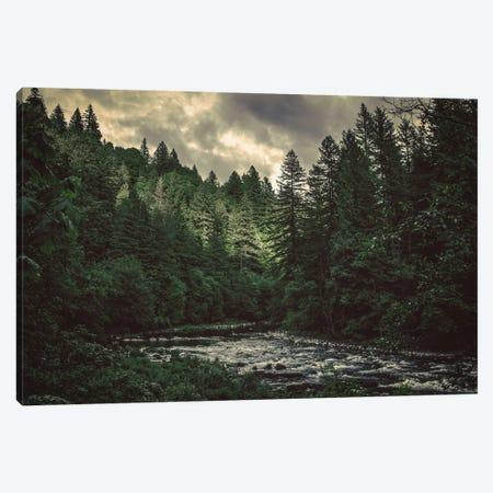 Pacific Northwest River And Trees Green Blue Water Fir Forest Canvas Print #MGK103} by Nature Magick Canvas Print