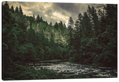 Pacific Northwest River And Trees Canvas Art Print