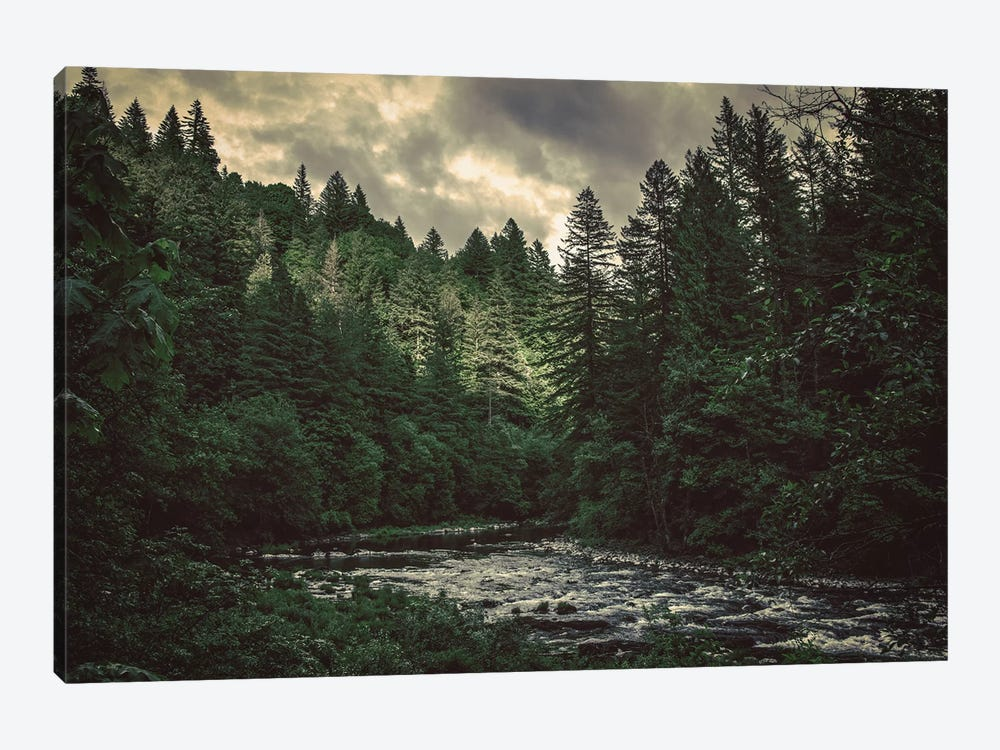 Pacific Northwest River And Trees Green Blue Water Fir Forest by Nature Magick 1-piece Canvas Artwork