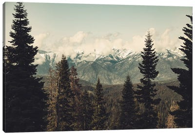 Snow Capped Sierra Mountains And Fir Trees In Sequoia National Park California Canvas Art Print