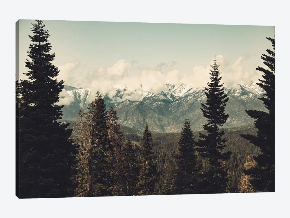 Snow Capped Sierra Mountains And Fir Trees In Sequoia National Park California by Nature Magick 1-piece Canvas Art Print