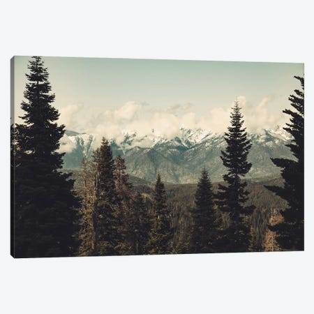 Snow Capped Sierra Mountains And Fir Trees In Sequoia National Park California Canvas Print #MGK146} by Nature Magick Canvas Art
