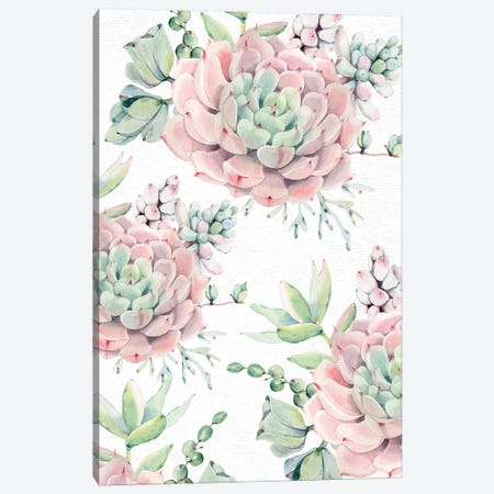 Succulents Southwestern Floral Pink And Green Succulent Flowers On Desert White Canvas Print #MGK156} by Nature Magick Canvas Print
