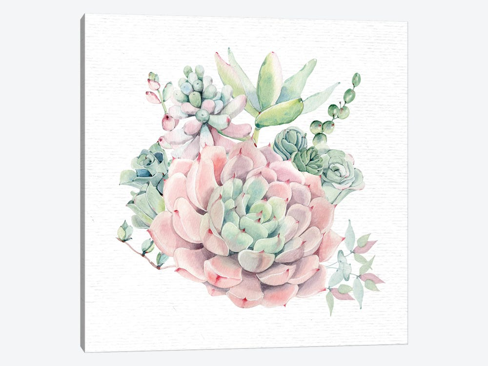 Succulents Southwestern Floral II by Nature Magick 1-piece Canvas Print