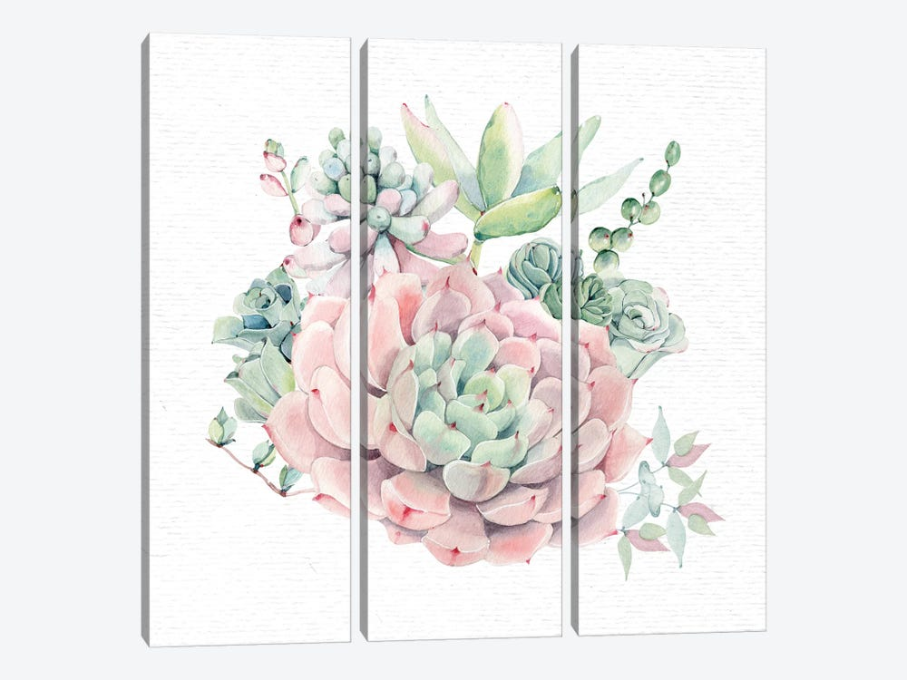 Succulents Southwestern Floral II by Nature Magick 3-piece Canvas Art Print