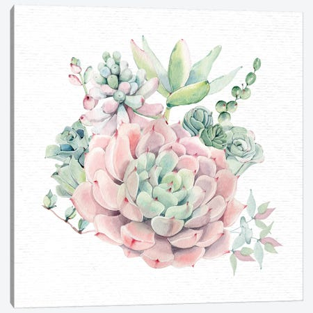 Succulents Southwestern Floral II Canvas Print #MGK157} by Nature Magick Canvas Art Print