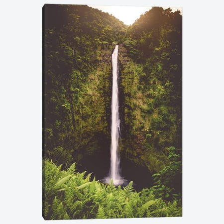 Tropical Island Waterfall Hawaii Akaka Falls Canvas Print #MGK172} by Nature Magick Canvas Artwork
