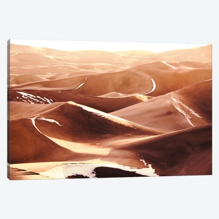 Desert Sand Dunes Vintage Snow Capped National Park Canvas Print #MGK268} by Nature Magick Canvas Artwork