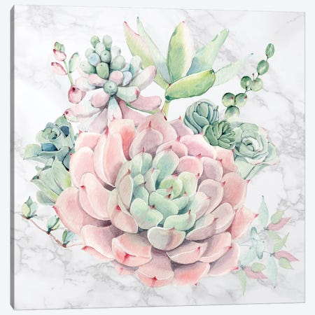 Desert Succulents Floral Watercolor on Marble 3-Piece Canvas #MGK269} by Nature Magick Canvas Art