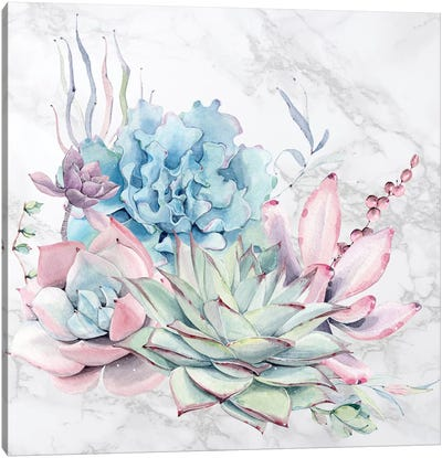 Desert Succulents Flowers Watercolor on Marble Canvas Art Print