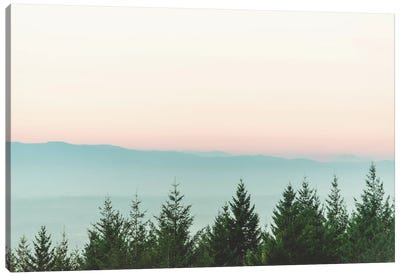 Forest Sunset Pink Sky Mountain Fog Canvas Art Print