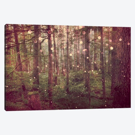 Magical Vintage Pacific Northwest Rainforest Canvas Print #MGK353} by Nature Magick Canvas Artwork